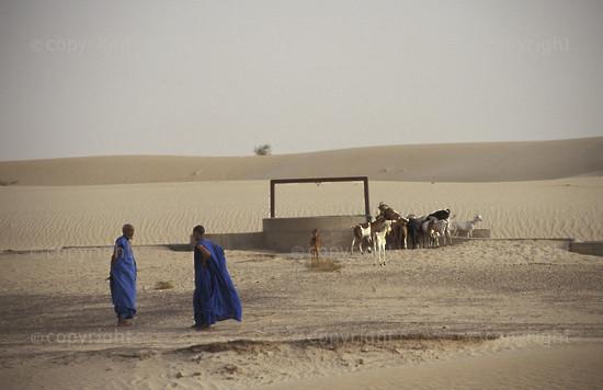 MA-TI-tuareg-004