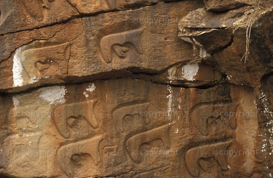 Machiti rock engraving depicting cattle, Dilla, Ethiopia2