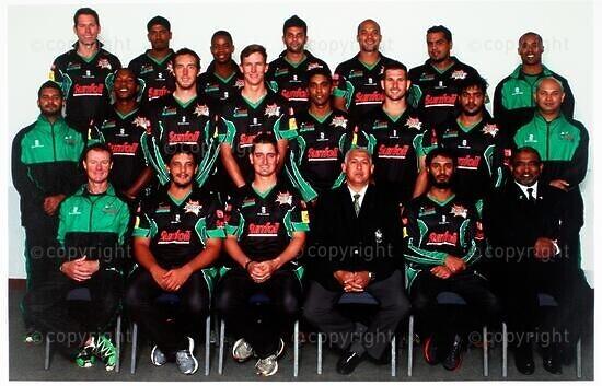 Sunfoil Dolphins Cricket Team, Ram Slam T20 Challenge 2012/2013