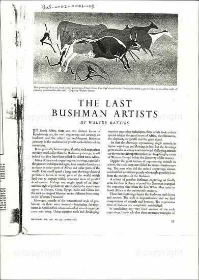 The Last Bushman Artists